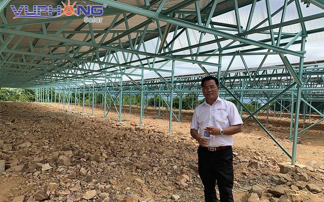 Điện mặt trời kết hợp nông nghiệp công nghệ cao tại Việt Nam: Mô hình sinh lợi kép